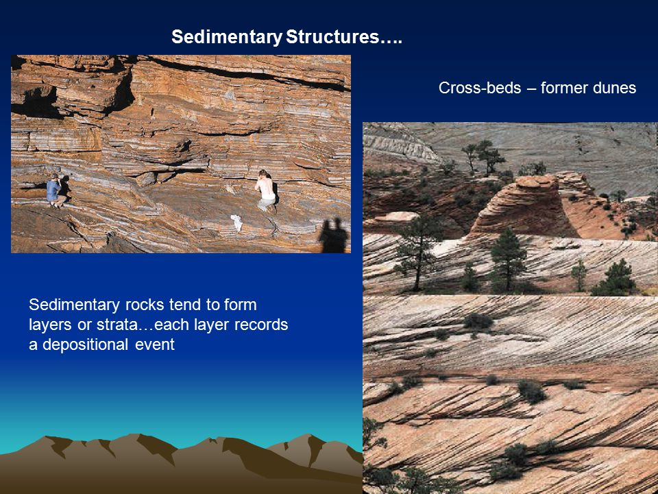 Sedimentary Structures…. Sedimentary rocks tend to form layers or strata…each layer records a depositional event Cross-beds – former dunes