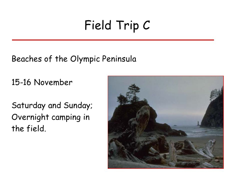 Field Trip C Beaches of the Olympic Peninsula 15-16 November Saturday and Sunday; Overnight camping in the field.