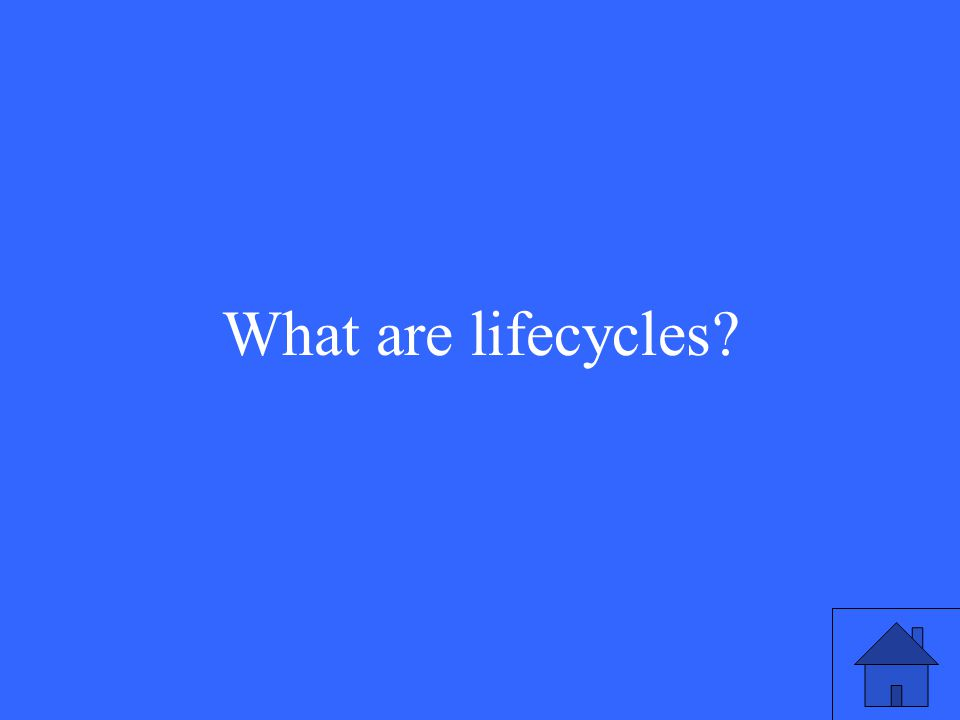 What are lifecycles