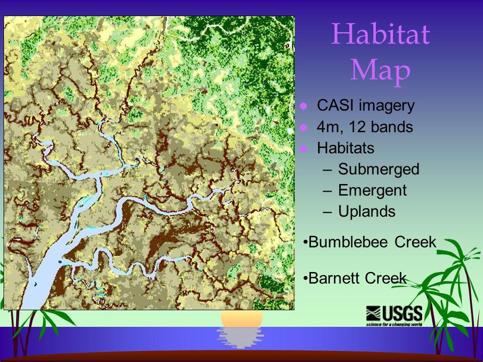 Tidal creek in forest Flooded low marsh Submerged limestone and high brackish marsh Submerged flats HABITATHABITAT