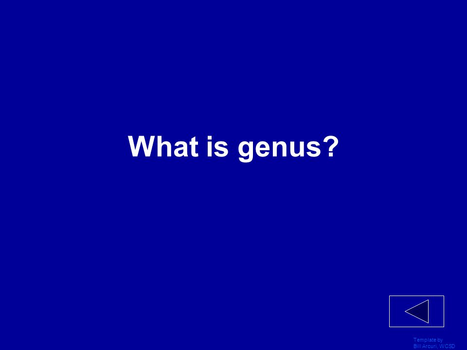 Template by Bill Arcuri, WCSD What is two (large groups)?