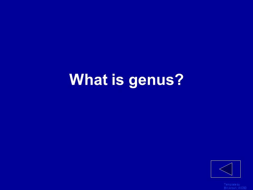 Template by Bill Arcuri, WCSD What is genus?