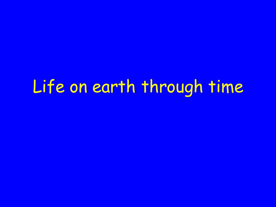 Life on earth through time