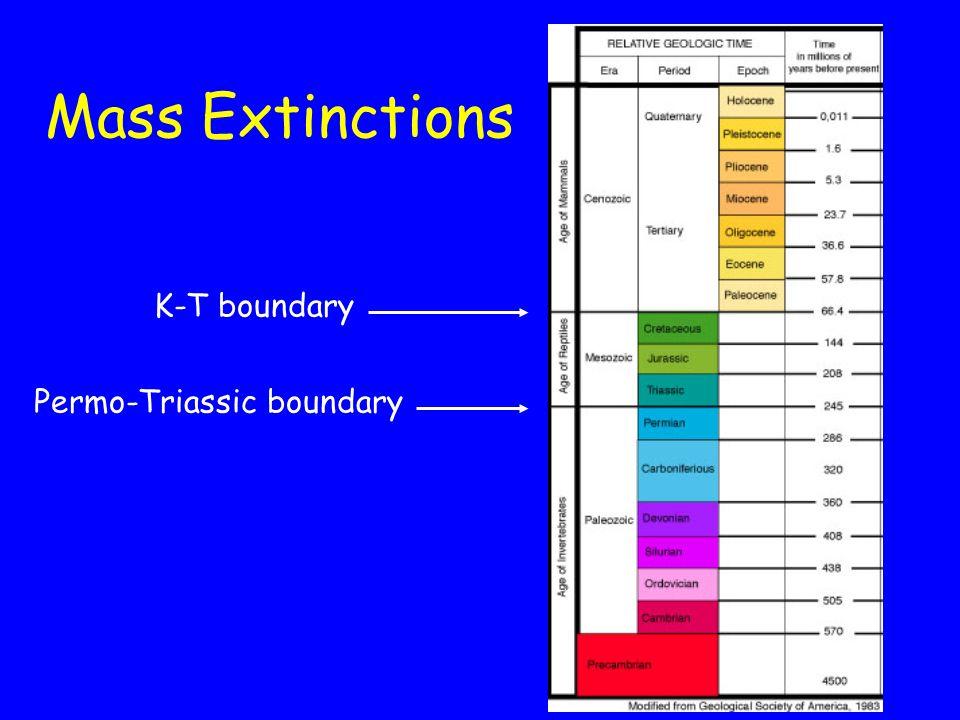 K-T boundary Permo-Triassic boundary Mass Extinctions