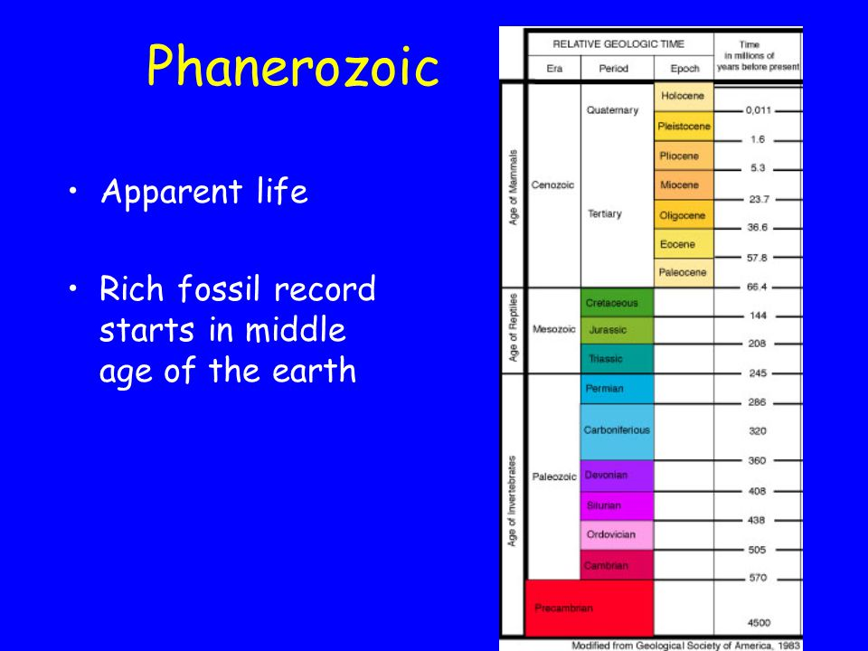 Phanerozoic Apparent life Rich fossil record starts in middle age of the earth