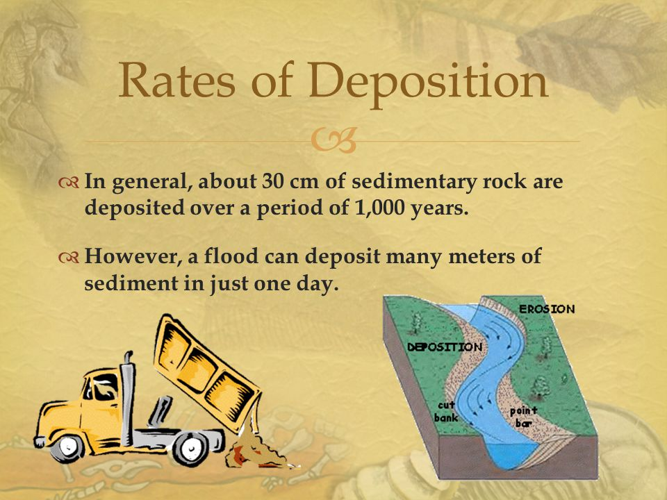  Rates of Deposition  In general, about 30 cm of sedimentary rock are deposited over a period of 1,000 years.