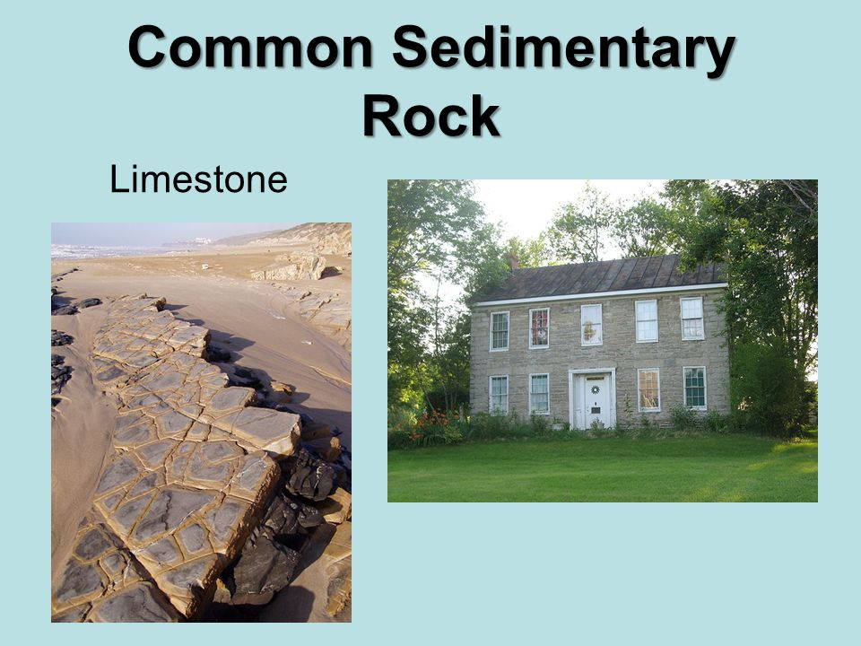Common Sedimentary Rock Limestone
