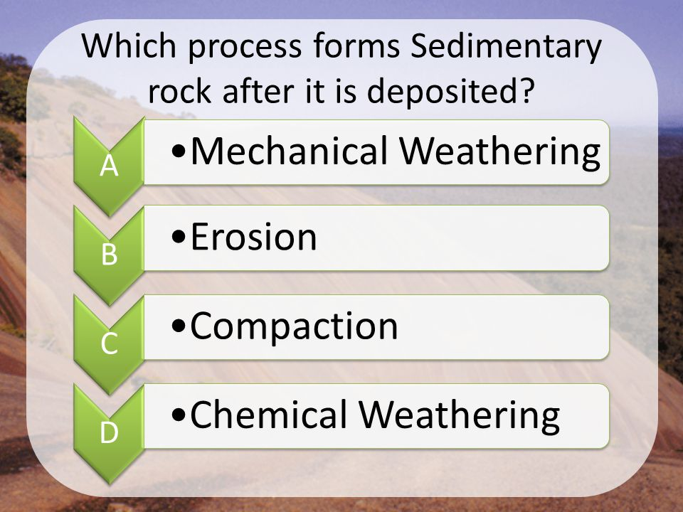 Which process forms Sedimentary rock after it is deposited? A Mechanical Weathering B Erosion C Compaction D Chemical Weathering