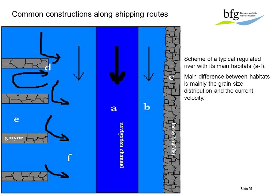 Slide 25 Scheme of a typical regulated river with its main habitats (a-f). Main difference between habitats is mainly the grain size distribution and