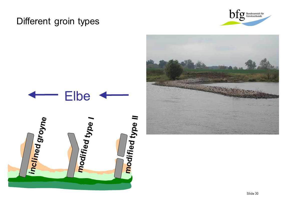 Slide 30 embankment pioneer- vegetation Elbe inclined groyne modified type I modified type II Different groin types