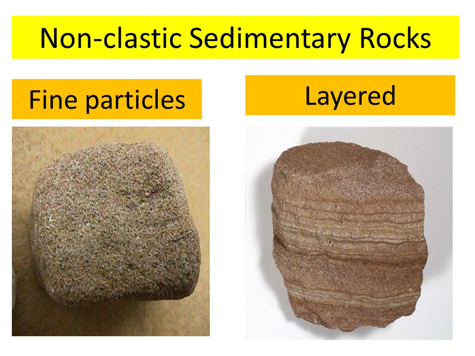 Non-clastic Sedimentary Rocks Fine particles Layered