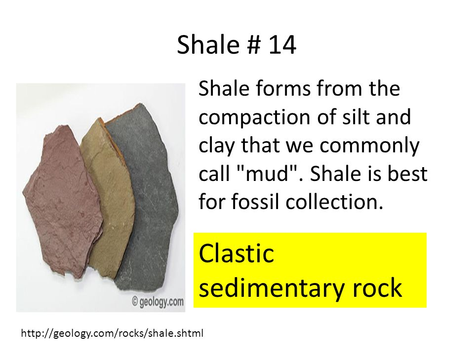 Shale # 14 Shale forms from the compaction of silt and clay that we commonly call mud .
