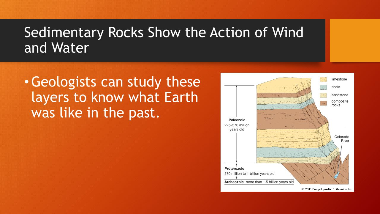 Sedimentary Rocks Show the Action of Wind and Water Geologists can study these layers to know what Earth was like in the past.