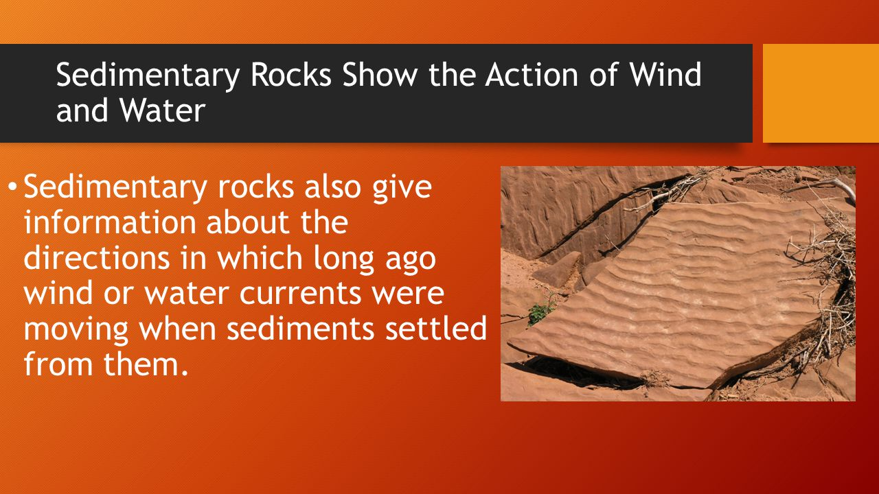 Sedimentary Rocks Show the Action of Wind and Water Sedimentary rocks also give information about the directions in which long ago wind or water curre