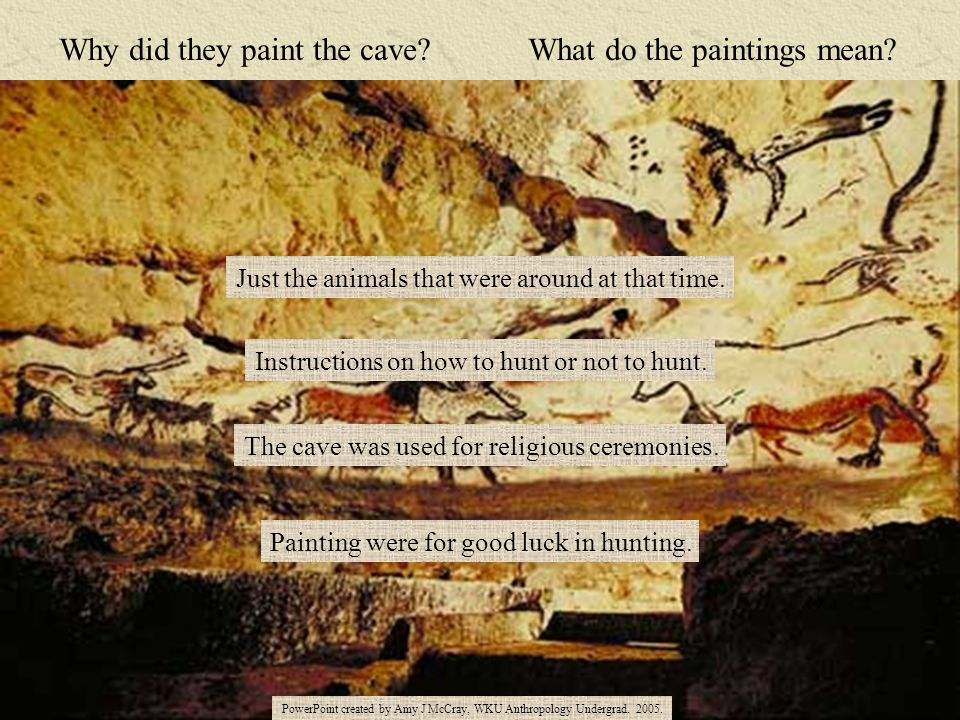 Why did they paint the cave? What do the paintings mean? Just the animals that were around at that time. Instructions on how to hunt or not to hunt. T