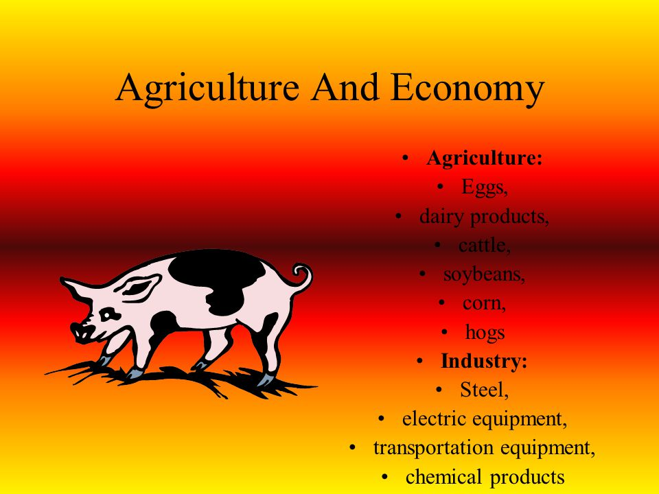 Agriculture And Economy Agriculture: Eggs, dairy products, cattle, soybeans, corn, hogs Industry: Steel, electric equipment, transportation equipment,