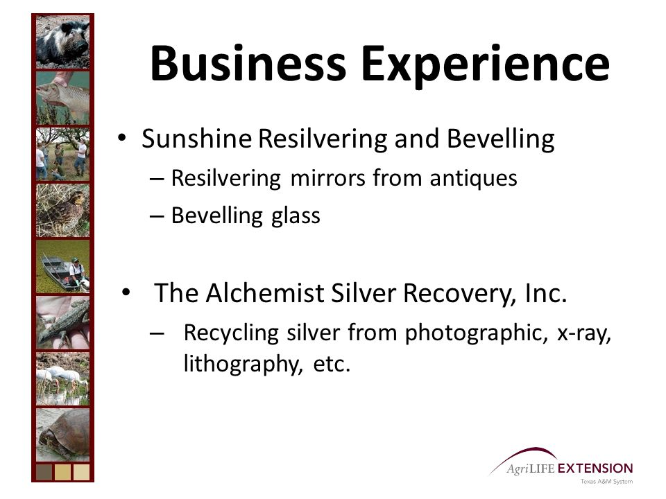 Business Experience Sunshine Resilvering and Bevelling – Resilvering mirrors from antiques – Bevelling glass The Alchemist Silver Recovery, Inc.