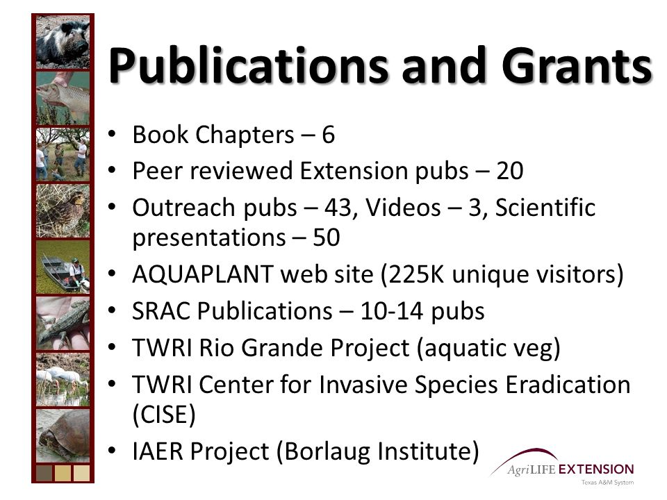 Publications and Grants Book Chapters – 6 Peer reviewed Extension pubs – 20 Outreach pubs – 43, Videos – 3, Scientific presentations – 50 AQUAPLANT web site (225K unique visitors) SRAC Publications – 10-14 pubs TWRI Rio Grande Project (aquatic veg) TWRI Center for Invasive Species Eradication (CISE) IAER Project (Borlaug Institute)
