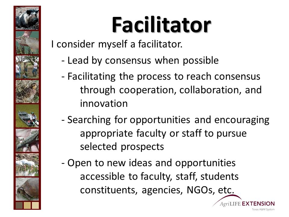 Facilitator I consider myself a facilitator.