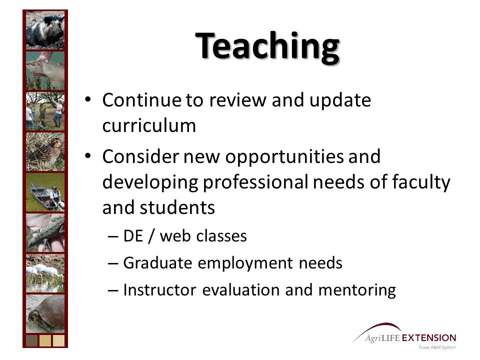 Teaching Continue to review and update curriculum Consider new opportunities and developing professional needs of faculty and students – DE / web classes – Graduate employment needs – Instructor evaluation and mentoring