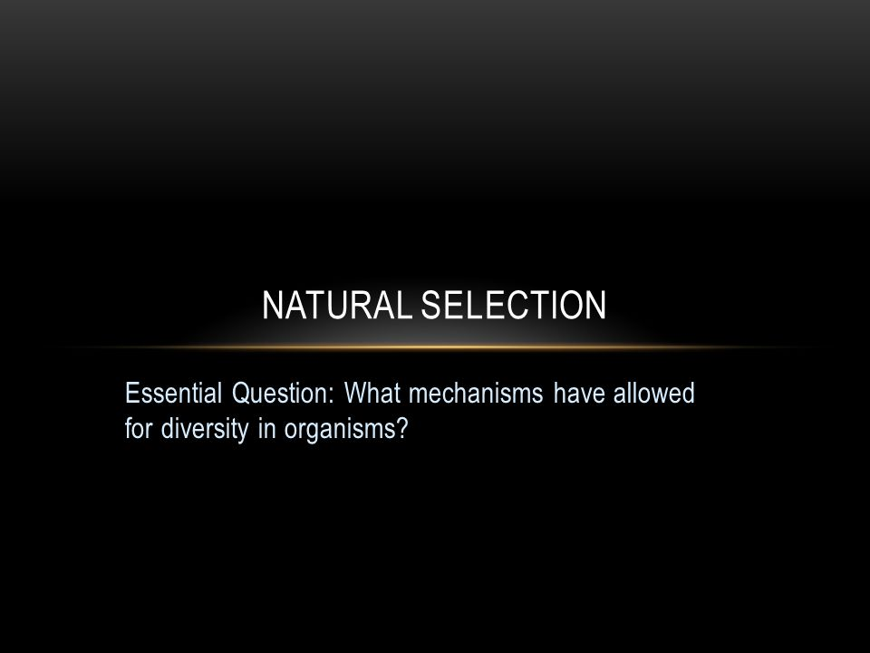 Essential Question: What mechanisms have allowed for diversity in organisms? NATURAL SELECTION