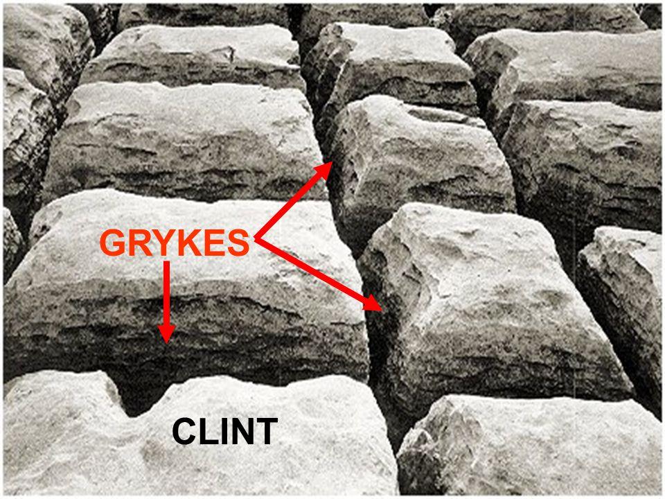 CLINT GRYKES