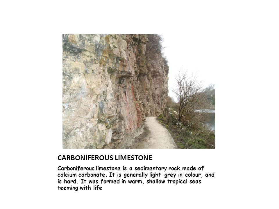 CARBONIFEROUS LIMESTONE Carboniferous limestone is a sedimentary rock made of calcium carbonate.