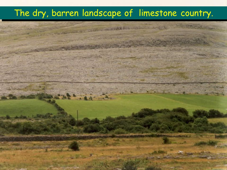 The dry, barren landscape of limestone country.