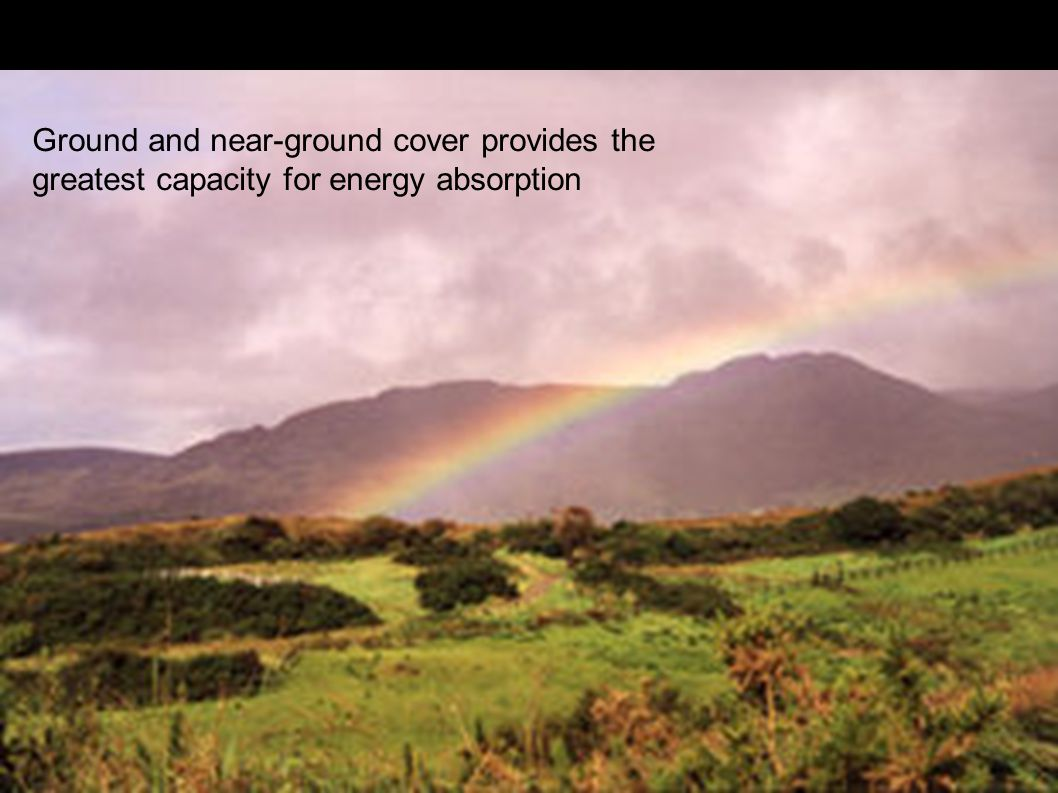 Fault Populations Ground and near-ground cover provides the greatest capacity for energy absorption