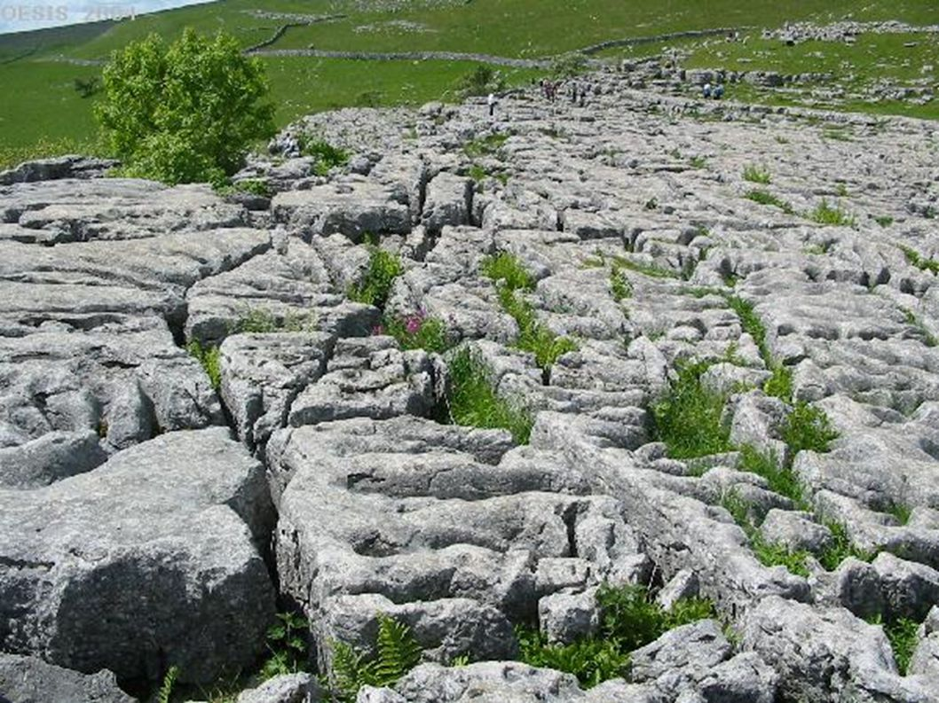 Streams disappearing underground and resurging from underground in limestone country.