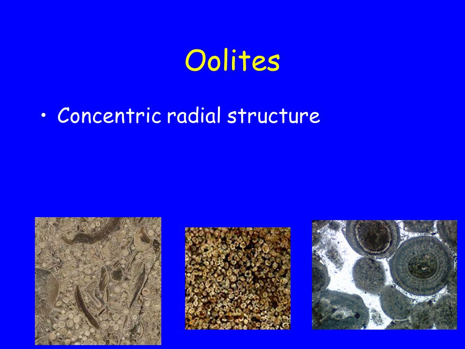 Oolites Concentric radial structure
