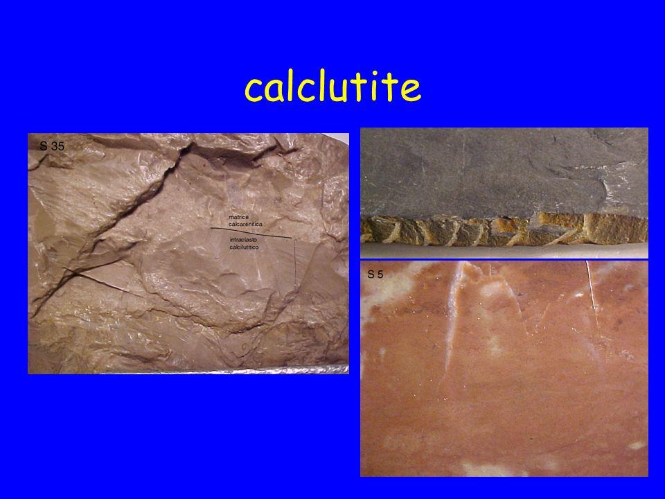 calclutite