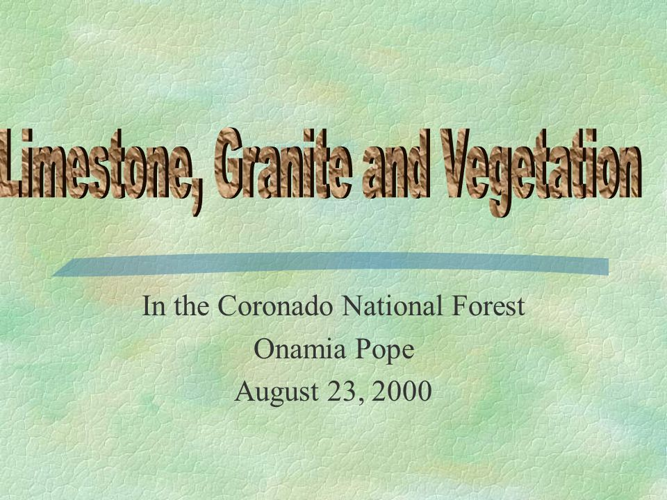 In the Coronado National Forest Onamia Pope August 23, 2000