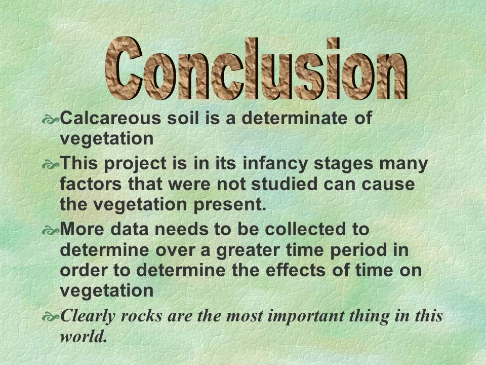  Calcareous soil is a determinate of vegetation  This project is in its infancy stages many factors that were not studied can cause the vegetation present.