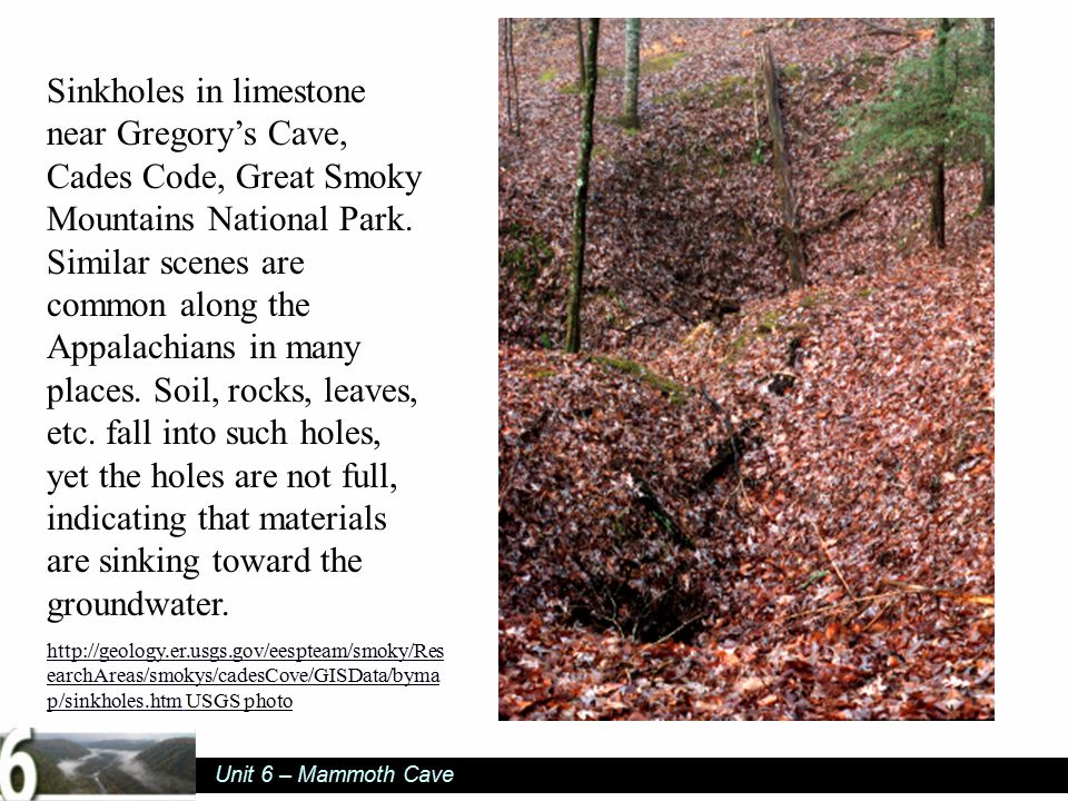 Unit 6 – Mammoth Cave Sinkholes in limestone near Gregory's Cave, Cades Code, Great Smoky Mountains National Park.