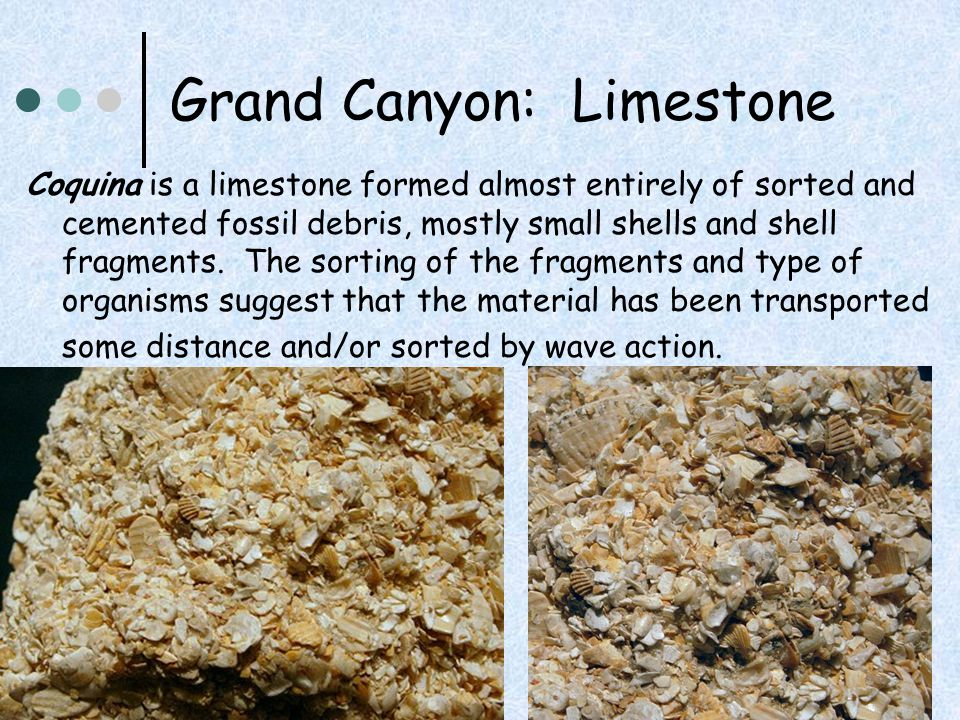 Grand Canyon: Limestone Coquina is a limestone formed almost entirely of sorted and cemented fossil debris, mostly small shells and shell fragments. T