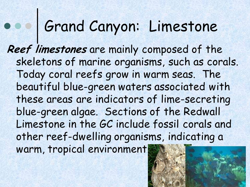 Grand Canyon: Limestone Law (or principle) of Superposition states that in any undisturbed sequence of layered rocks, a particular bed must be older than any bed on top of it.