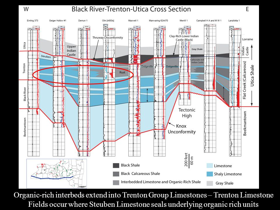 Organic-rich interbeds extend into Trenton Group Limestones – Trenton Limestone Fields occur where Steuben Limestone seals underlying organic rich units