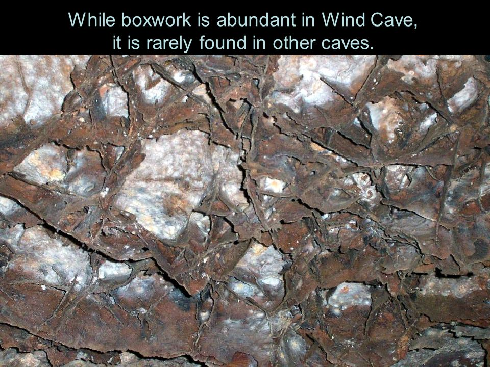 While boxwork is abundant in Wind Cave, it is rarely found in other caves.