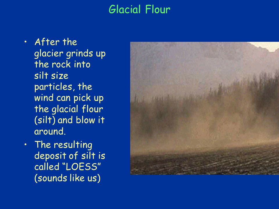 Glacial Flour After the glacier grinds up the rock into silt size particles, the wind can pick up the glacial flour (silt) and blow it around.