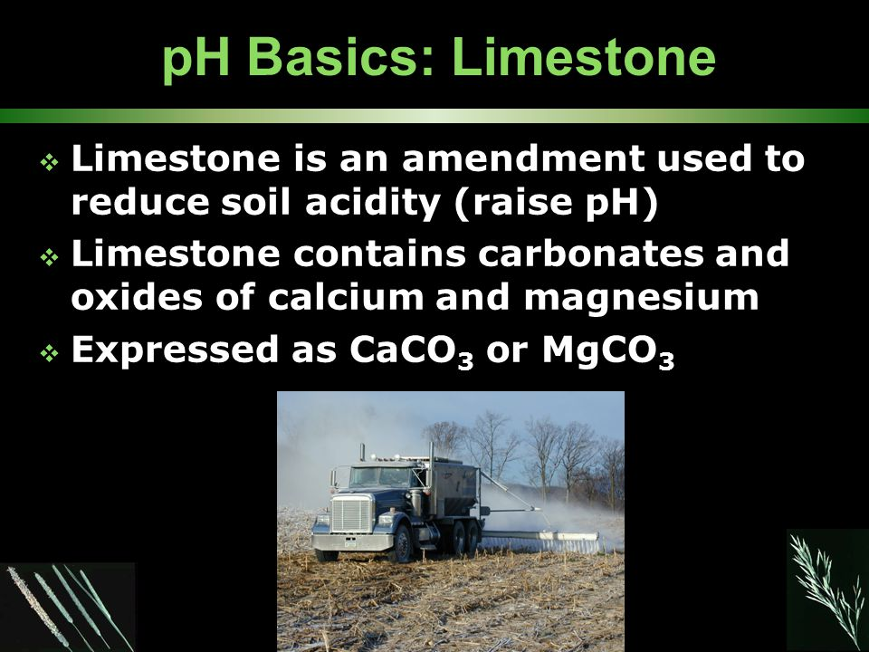 pH Basics: Limestone  Limestone is an amendment used to reduce soil acidity (raise pH)  Limestone contains carbonates and oxides of calcium and magn