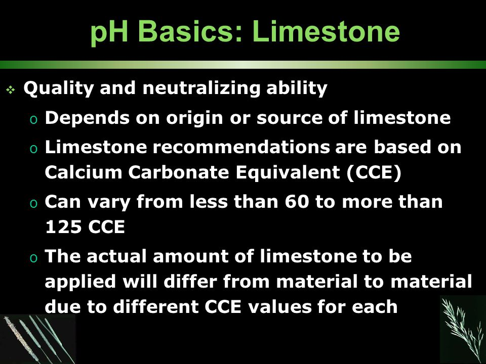 pH Basics: Limestone  Quality and neutralizing ability o Depends on origin or source of limestone o Limestone recommendations are based on Calcium Carbonate Equivalent (CCE) o Can vary from less than 60 to more than 125 CCE o The actual amount of limestone to be applied will differ from material to material due to different CCE values for each