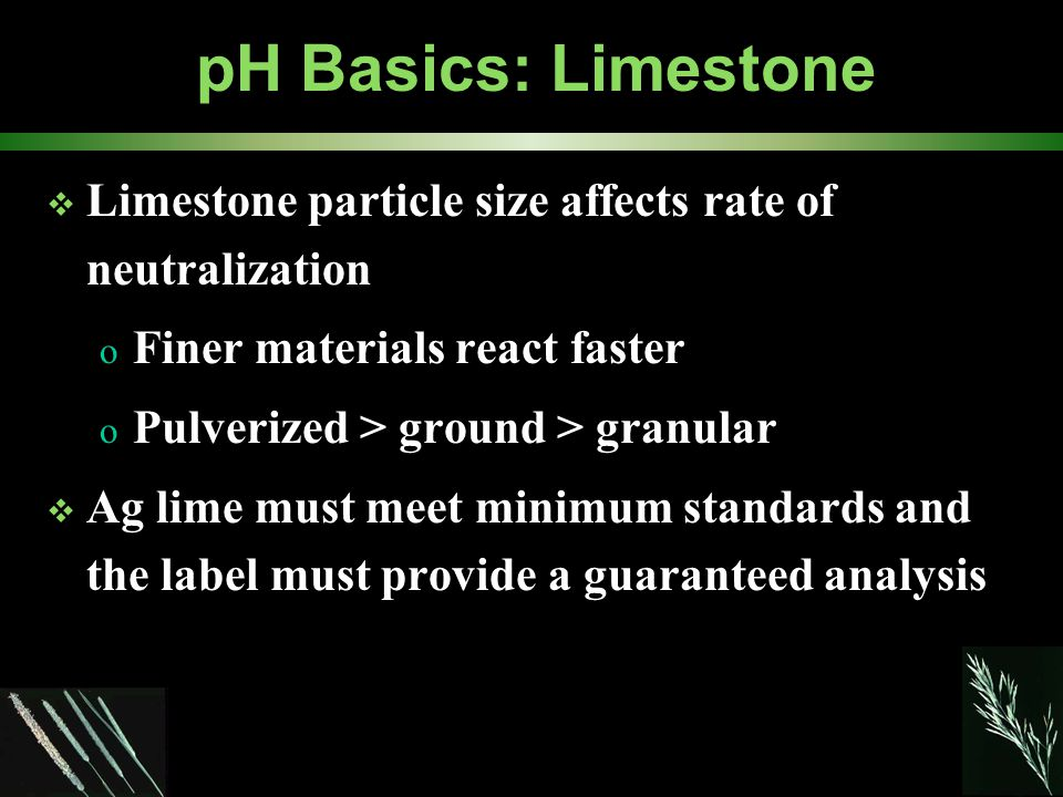 pH Basics: Limestone  Limestone particle size affects rate of neutralization o Finer materials react faster o Pulverized > ground > granular  Ag lime must meet minimum standards and the label must provide a guaranteed analysis