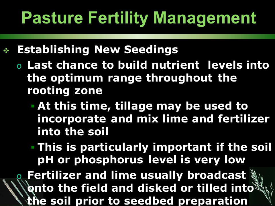 Pasture Fertility Management  Establishing New Seedings o Last chance to build nutrient levels into the optimum range throughout the rooting zone  At this time, tillage may be used to incorporate and mix lime and fertilizer into the soil  This is particularly important if the soil pH or phosphorus level is very low o Fertilizer and lime usually broadcast onto the field and disked or tilled into the soil prior to seedbed preparation