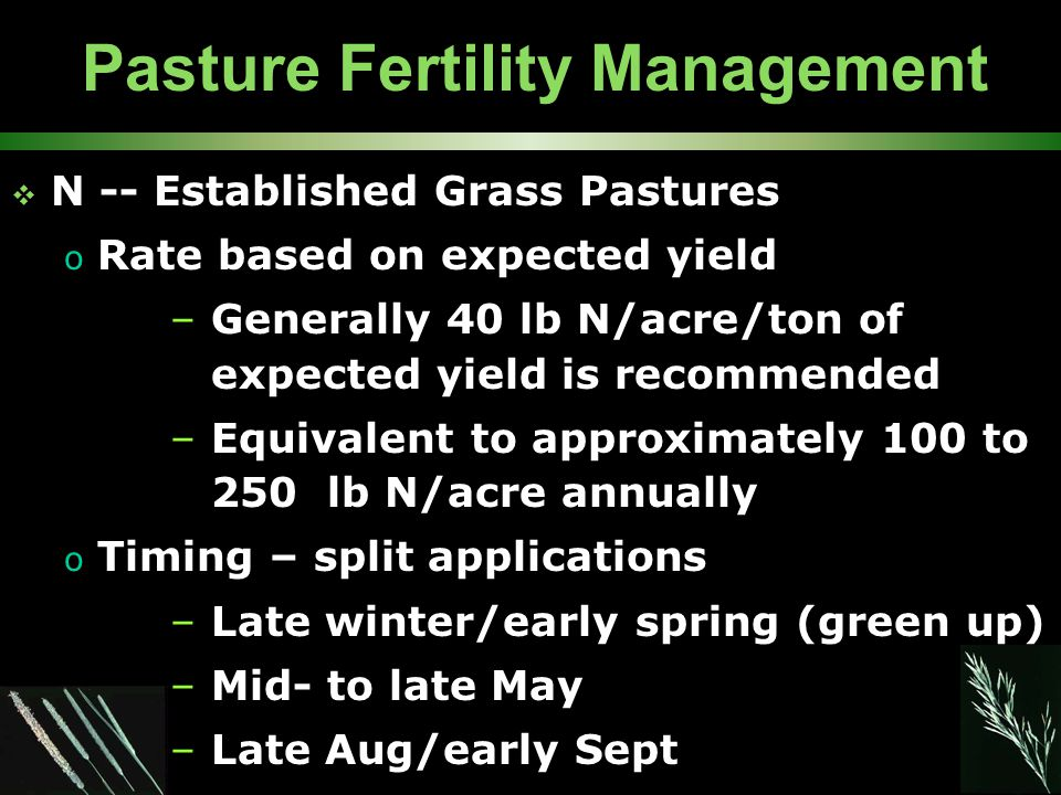 Pasture Fertility Management  N -- Established Grass Pastures o Rate based on expected yield –Generally 40 lb N/acre/ton of expected yield is recomme