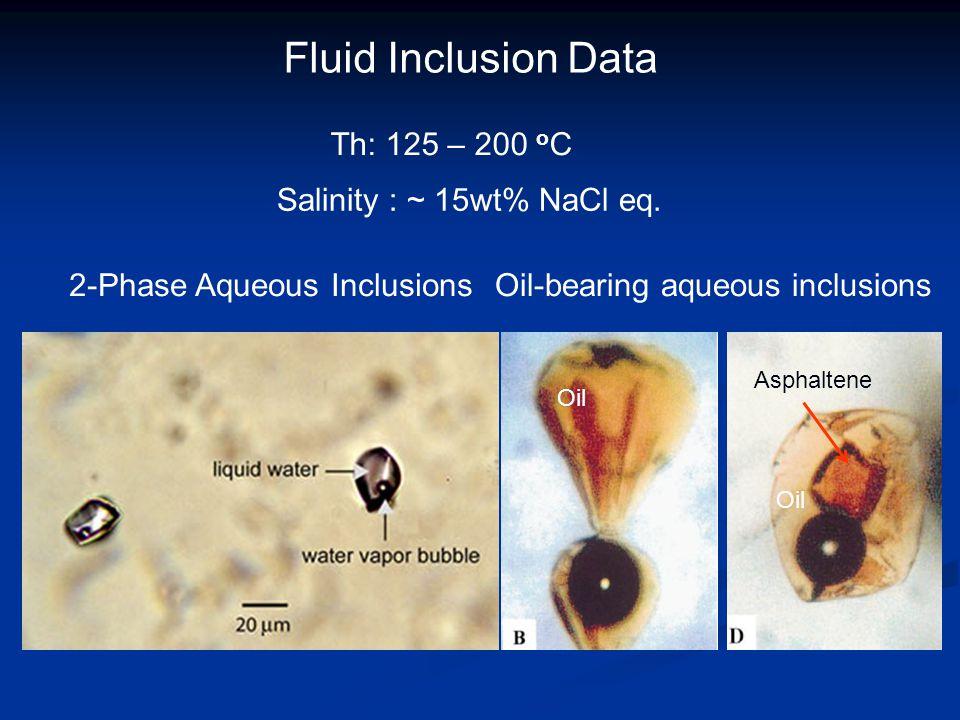 Fluid Inclusion Data Th: 125 – 200 o C Salinity : ~ 15wt% NaCl eq. Oil-bearing aqueous inclusions2-Phase Aqueous Inclusions Asphaltene Oil