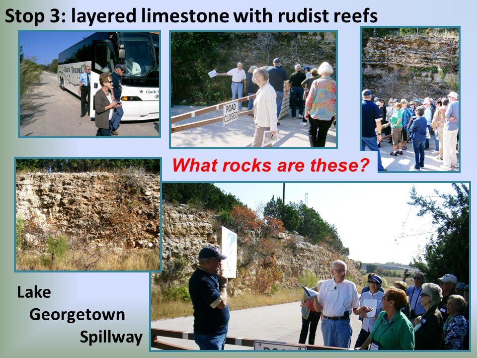 Stop 3: layered limestone with rudist reefs Lake Georgetown Spillway What rocks are these
