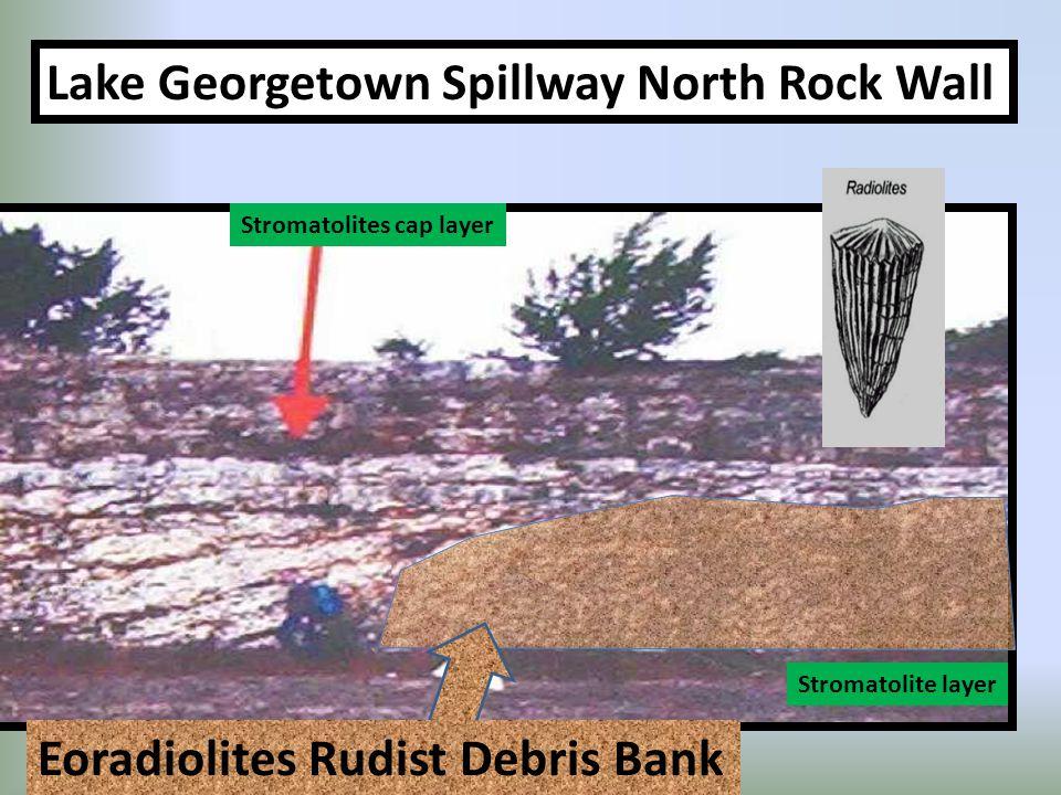 Stromatolites cap layer Stromatolite layer Lake Georgetown Spillway North Rock Wall Eoradiolites Rudist Debris Bank