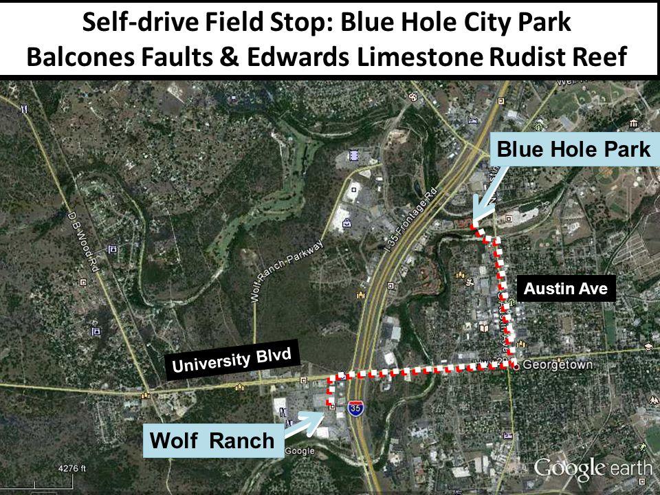 Self-drive Field Stop: Blue Hole City Park Balcones Faults & Edwards Limestone Rudist Reef University Blvd Wolf Ranch Blue Hole Park Austin Ave