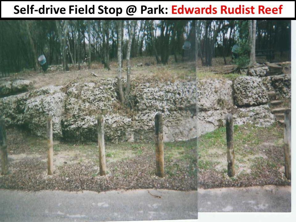 Self-drive Field Stop @ Park: Edwards Rudist Reef